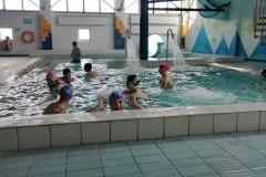 basenowe001
