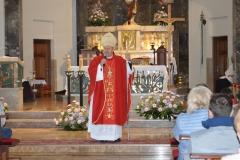 1_biskup013